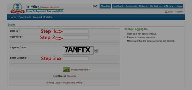 Income Tax User Login