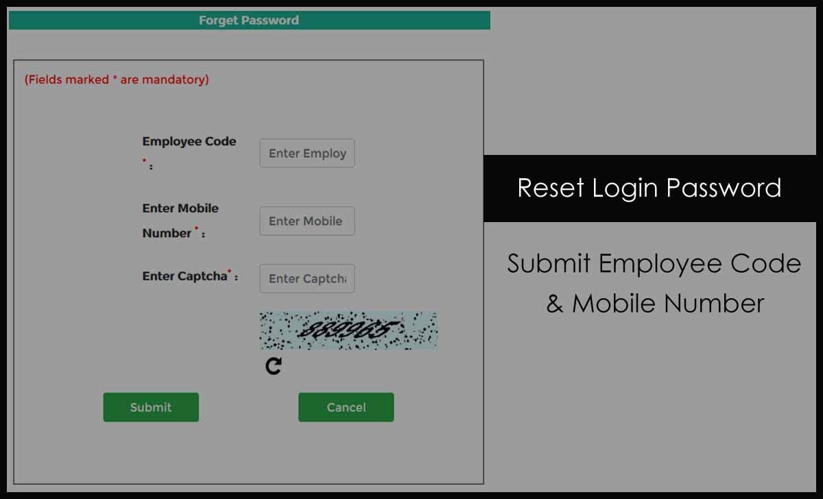 Reset NDMC Login Password for Payslip or Employee Corner