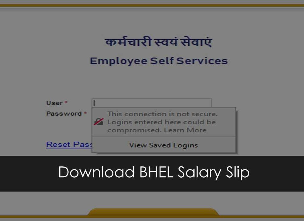 Print BHEL Payslip Online at SAP NetWeaver ESS Portal
