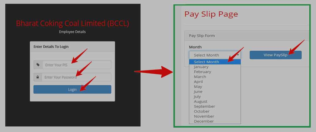 BCCL Payslip Download Process