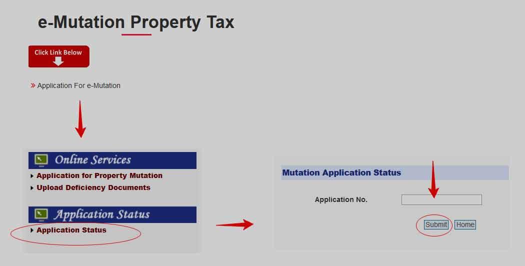 Delhi Property Mutation Application Status Check